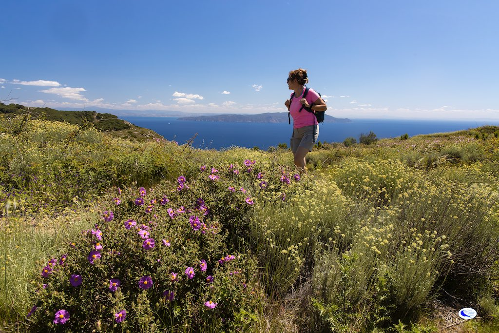 The Tuscan Archipelago Park ready for the Walking Festival