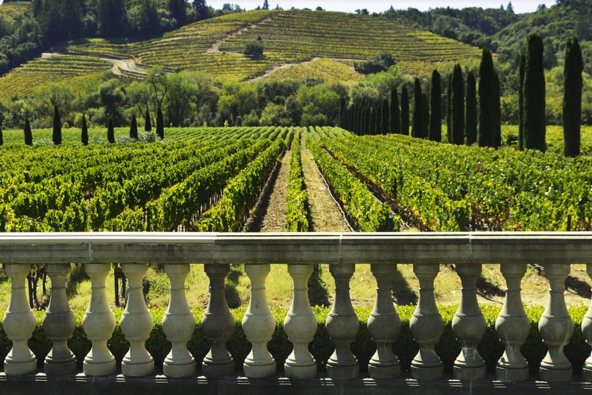 Food and wine, the tourist is increasingly eclectic