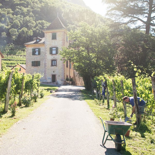 Kornell Estate: a vineyard vacation in the heart of South Tyrol